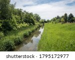Natural Flowing Stream With...