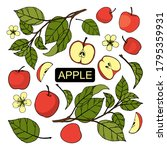 vector set with freehand apples ... | Shutterstock .eps vector #1795359931