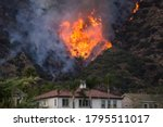 Small photo of A wildfire burns the hillside behind homes on Wednesday, Aug. 12, 2020, Azusa, California