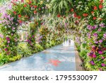 beautiful flowers background.... | Shutterstock . vector #1795530097