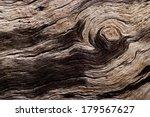 Rotten Driftwood