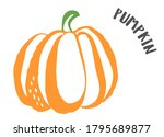 pu ppkin drawing hand painted... | Shutterstock .eps vector #1795689877