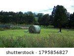 Freshly  Cut Hay Bale On A Field