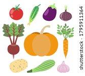 set of vegetables   carrot ... | Shutterstock .eps vector #1795911364