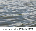 Surface Texture Of Fresh River...