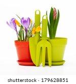 flowers in pot and garden tools ... | Shutterstock . vector #179628851