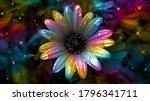 Colorful Daisy. Rainbow Flower...
