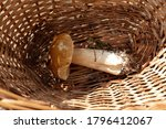 One White Mushroom In A Wicker...
