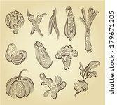 hand drawn set vegetables  | Shutterstock .eps vector #179671205