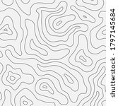 topographic map seamless... | Shutterstock .eps vector #1797145684
