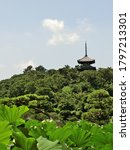 Three Storied Pagoda In Japan
