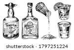 tequila bottles and salt shaker.... | Shutterstock .eps vector #1797251224