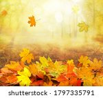 pile of autumn and falling...   Shutterstock . vector #1797335791