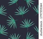 beautiful seamless vector...   Shutterstock .eps vector #1797555364
