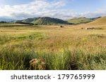 Summer Valley Mountain...