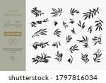 a set of silhouettes of olive... | Shutterstock .eps vector #1797816034