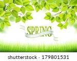 natural background. vector | Shutterstock .eps vector #179801531