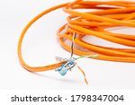 Stripped Ethernet Cable With...
