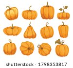 Cartoon Pumpkin Flat Icons Set. ...