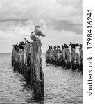 Old Pier In The Sea From...