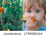 A Cute Baby Is Eating Yellow...