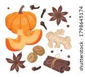 pumpkin spice set  large... | Shutterstock .eps vector #1798645174
