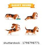 cute basset hound dog animal... | Shutterstock .eps vector #1798798771