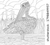 Vector illustration with pelican bird. Colouring waterfowl bird page. River print. Monochrome line drawing. Lake
