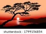 sunset view with an old tree  | Shutterstock .eps vector #1799156854