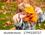 Autumnal Mood. Little Child Boy ...