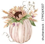 Watercolor Illustration Of The...