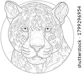 leopard . animal.coloring book... | Shutterstock .eps vector #1799296954