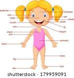 vocabulary part of body | Shutterstock .eps vector #179959091