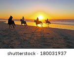 Horse Riding On The Beach At...