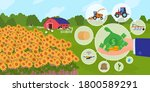 finance support for agriculture ... | Shutterstock .eps vector #1800589291