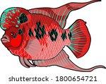 Cichlid Flower Hone Fish Big...