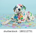 Stock photo a silly little dalmatian puppy that looks like he got into the art supplies on a blue background 180112751
