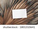 summer stationery still life.... | Shutterstock . vector #1801310641