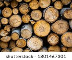 A Stack Of Chopped Firewood...