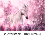 Watercolor Painting   Wild Horse