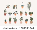 house plants flat illustration. ...   Shutterstock .eps vector #1801511644