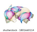 cute sleeping unicorn  isolated ... | Shutterstock . vector #1801660114