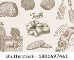 truffles mushrooms background.... | Shutterstock .eps vector #1801697461