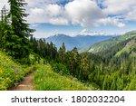 Hiking At Mount Baker In Peak...