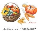 Watercolor Autumn Hand Drawn...
