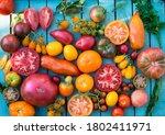 Colorful Organic Tomatoes. Mix...