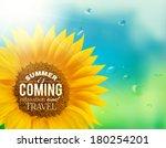 Orange Sunflower With Spring...