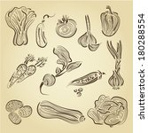 hand drawn set vegetables | Shutterstock .eps vector #180288554