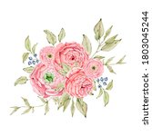 watercolor illustration of boho ... | Shutterstock . vector #1803045244