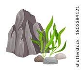 Angulated Sea Stone Or...